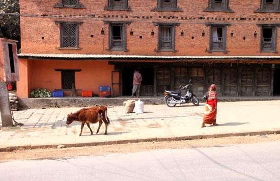 ネパールを歩く2 ポカラ オールドバザール_e0048413_21171673.jpg