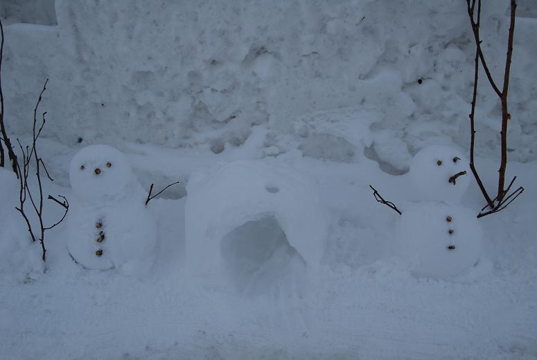 雪明かりフェスタ_e0120026_23113516.jpg