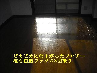 f0031037_2117347.jpg