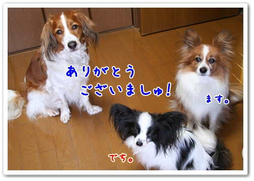 d0013149_1482129.jpg