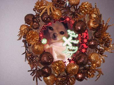 クリスマス☆仕込みっ☆インド料理編_f0196753_21372236.jpg