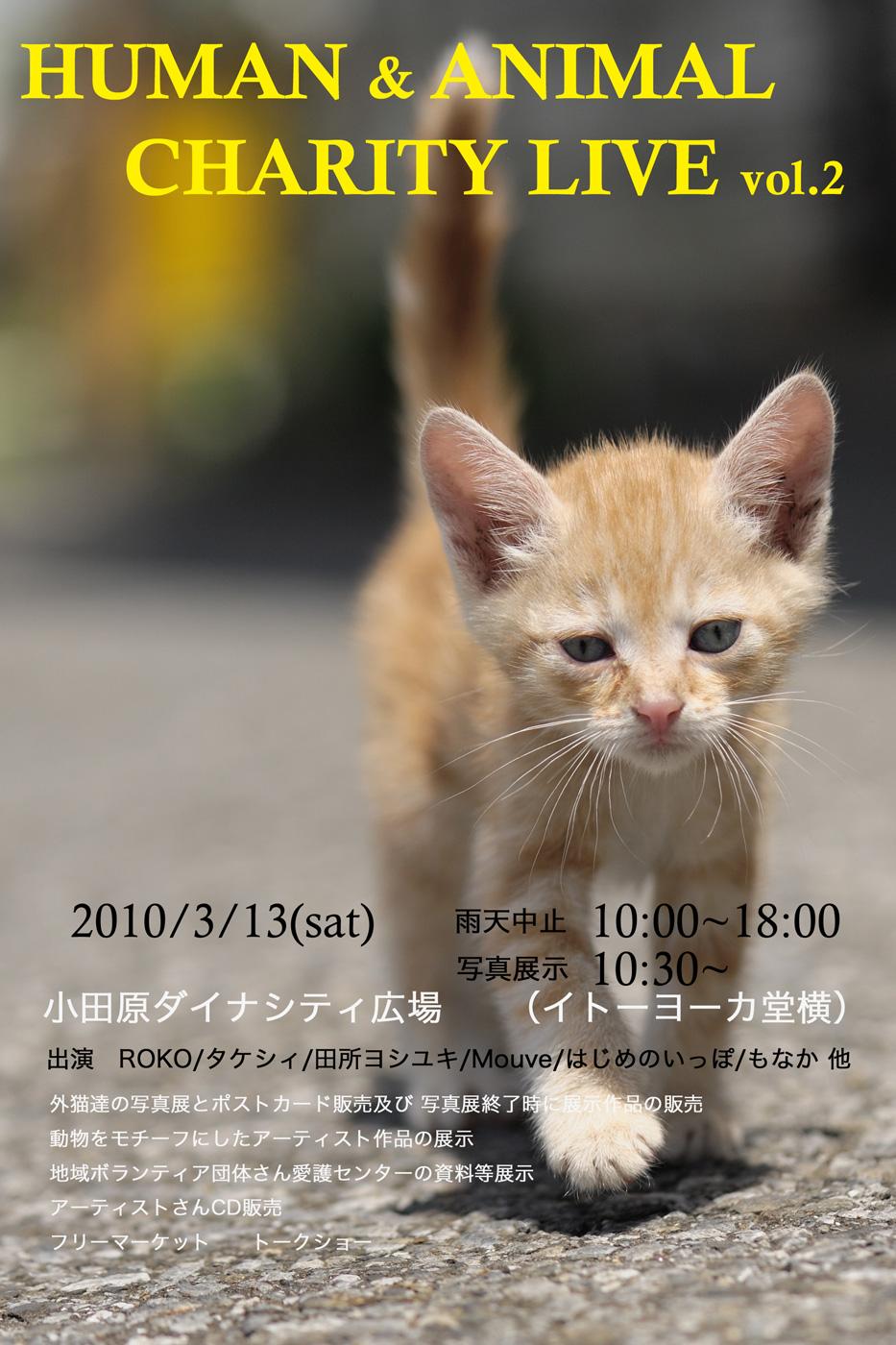 f0011273_1354121.jpg