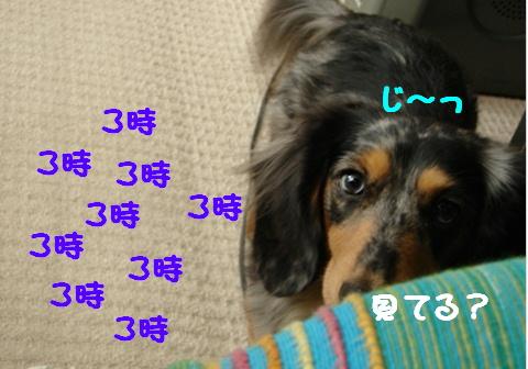 f0195891_18183749.jpg