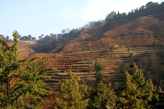 ネパールを歩く4 ナガルコット_e0048413_10195099.jpg
