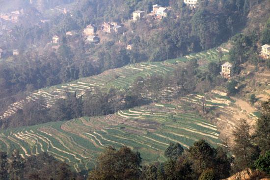 ネパールを歩く4 ナガルコット_e0048413_1020111.jpg