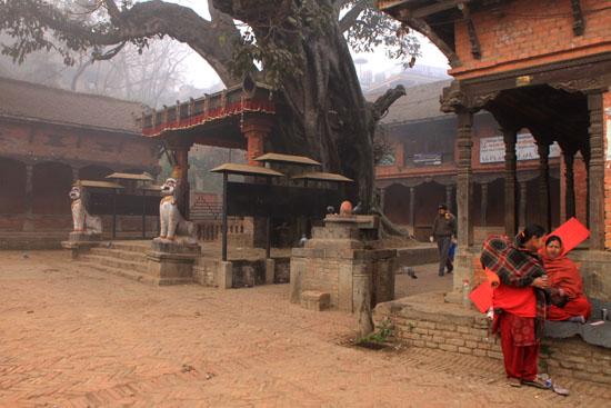 ネパールを歩く5 バクタブルのスタート_e0048413_20274765.jpg