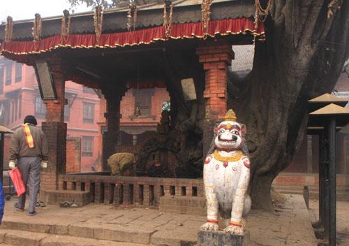 ネパールを歩く5 バクタブルのスタート_e0048413_20275780.jpg