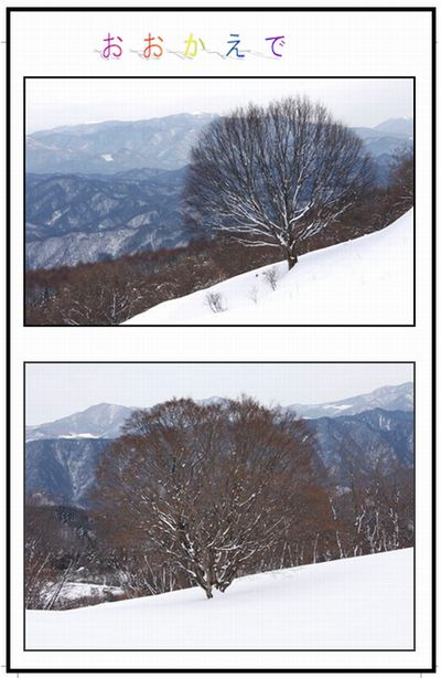 雪の白馬村    _c0073016_14355730.jpg