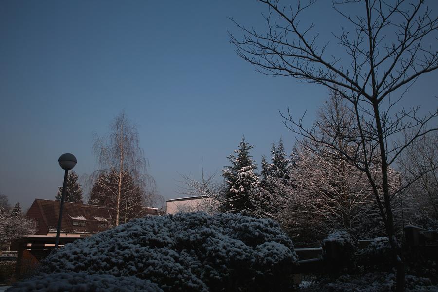 春節_b0148617_2331081.jpg