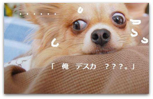 b0112758_16354884.jpg