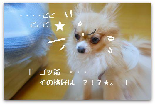 b0112758_17551695.jpg