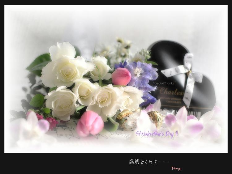c0044166_0492533.jpg