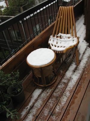 2010.02.02 雪だー!_b0010081_15454760.jpg