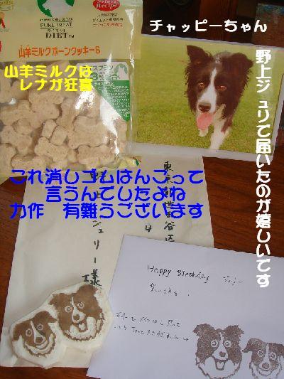 b0101991_1774066.jpg