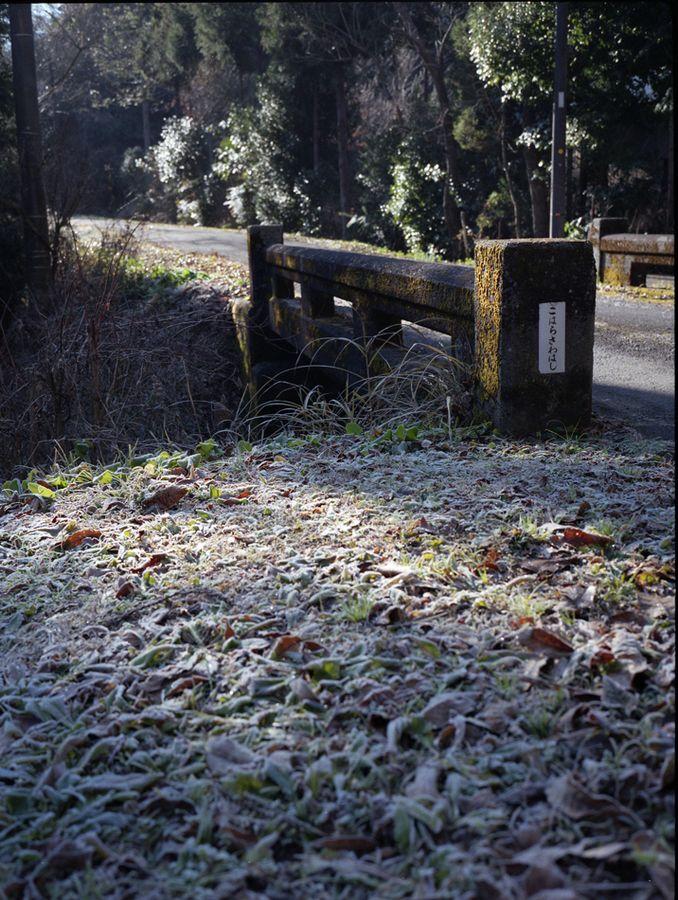 冬の大多喜_a0150013_21204862.jpg
