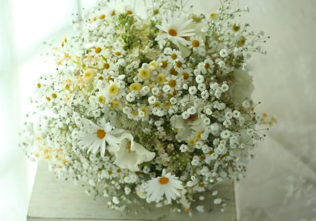ブーケ ジャスマックスタジオ様へ かすみ草とマーガレットと天使のタマゴとマトリカリア_a0042928_2141140.jpg