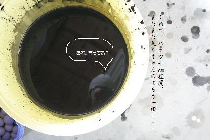 b0156928_19593330.jpg