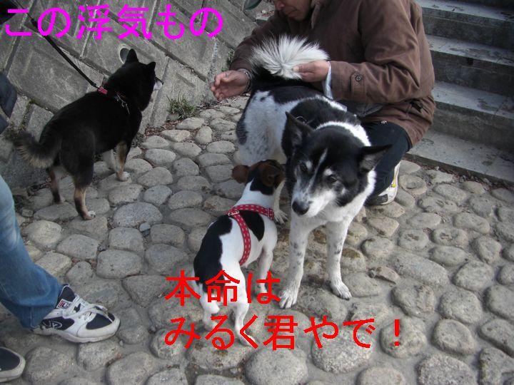 f0053952_12315083.jpg