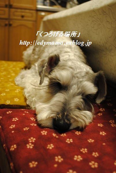 f0157373_2123698.jpg