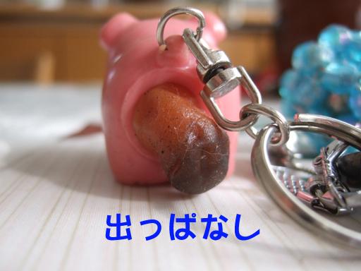 e0060693_1543367.jpg