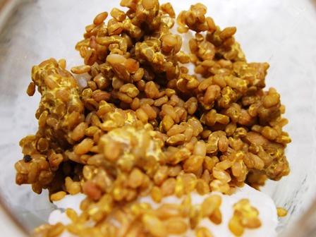 ニャンコの天然酵母パン教室_e0167593_2393730.jpg