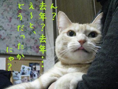 b0151748_1237137.jpg
