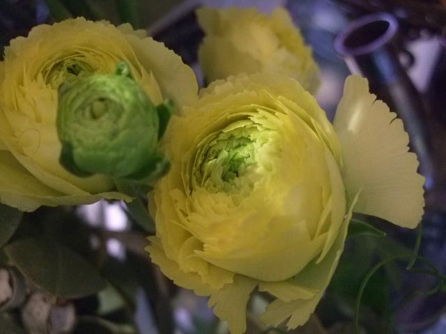 オークリーフ(桃と菜の花)_f0049672_13575794.jpg