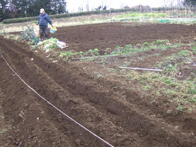 ジャガイモ畑の準備.....寒い!_b0137932_17104173.jpg