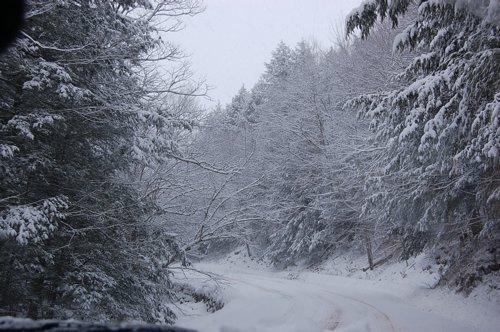 大雪林道の写真 _f0088456_11312283.jpg