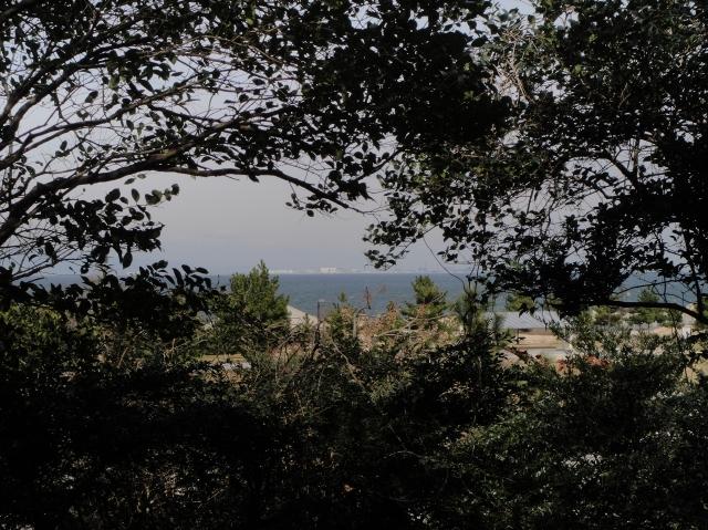 久し振りのうみべの森の散策  by  (TATE-misaki)_c0108460_1523439.jpg