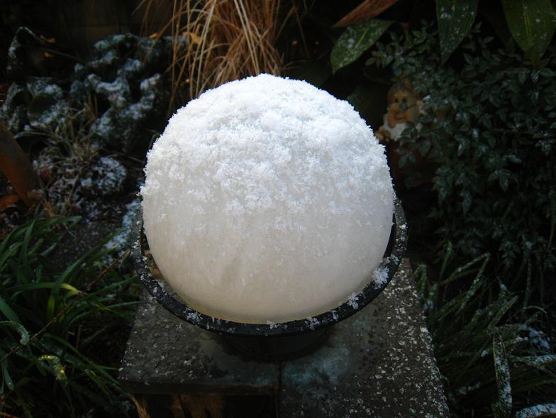 真冬のカキ氷?_a0107574_1004012.jpg