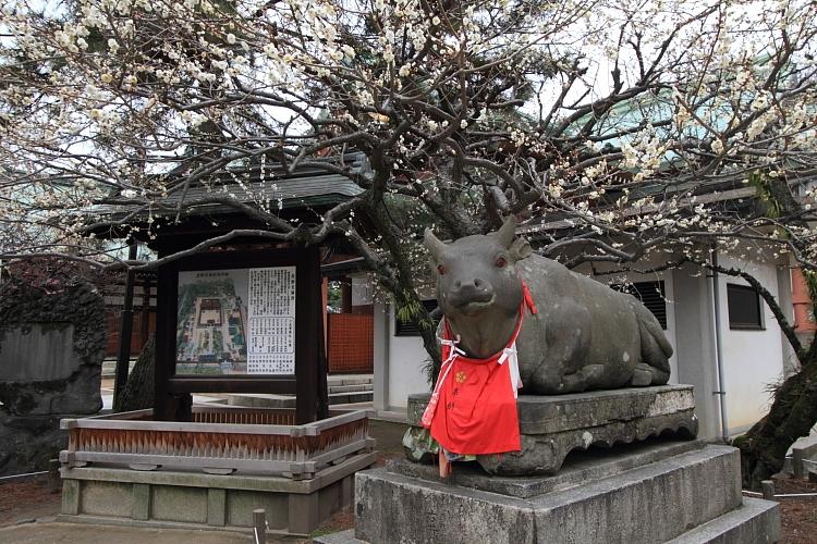 京都散策_e0051888_3505977.jpg