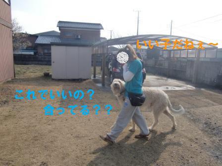 f0176830_16525648.jpg