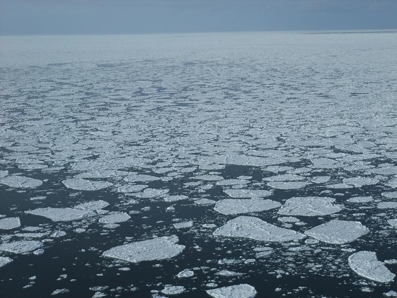 流氷撮影のおとも美唄焼きそば_f0050534_10274271.jpg