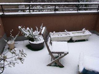 また積雪_f0209434_9194882.jpg