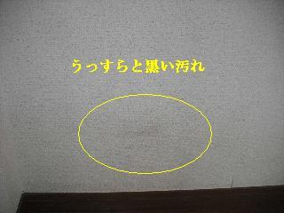 f0031037_20394253.jpg