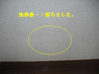 f0031037_20395243.jpg