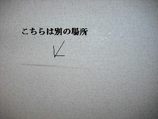 f0031037_2040041.jpg