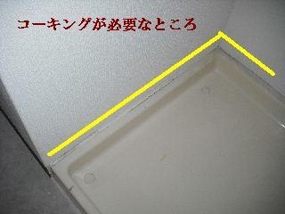 f0031037_20404367.jpg