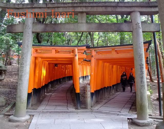 真冬の京都散策_a0092659_1932698.jpg