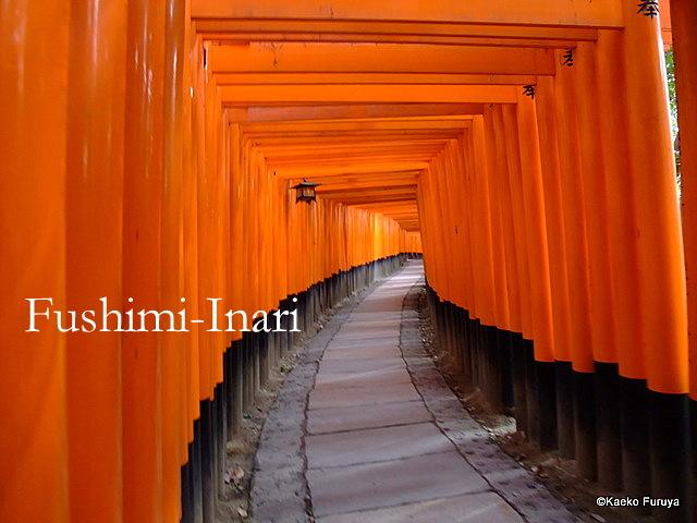 真冬の京都散策_a0092659_1950964.jpg