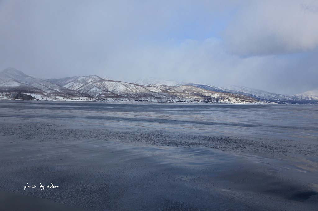 流氷の道東より~_a0039860_20415622.jpg