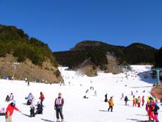 スキー教室_f0203164_1675382.jpg
