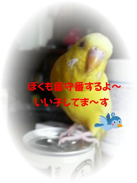 f0057565_23541893.jpg