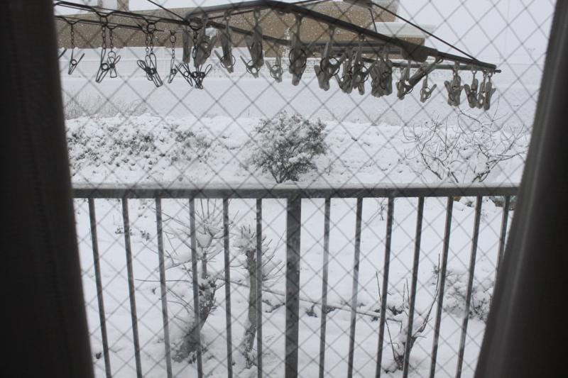 10年2月18日・雪景色_c0129671_985842.jpg