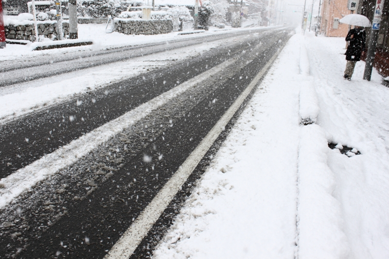 10年2月18日・雪景色_c0129671_99271.jpg