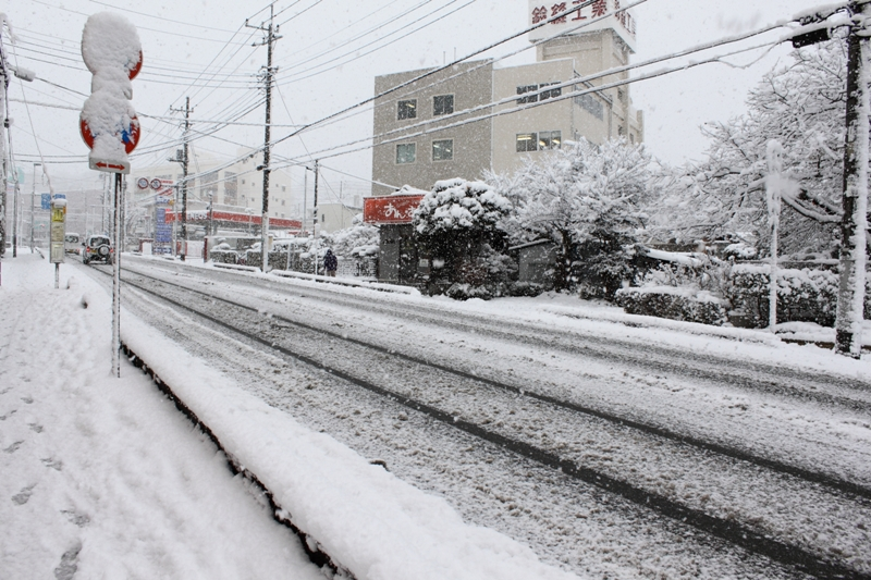 10年2月18日・雪景色_c0129671_994221.jpg