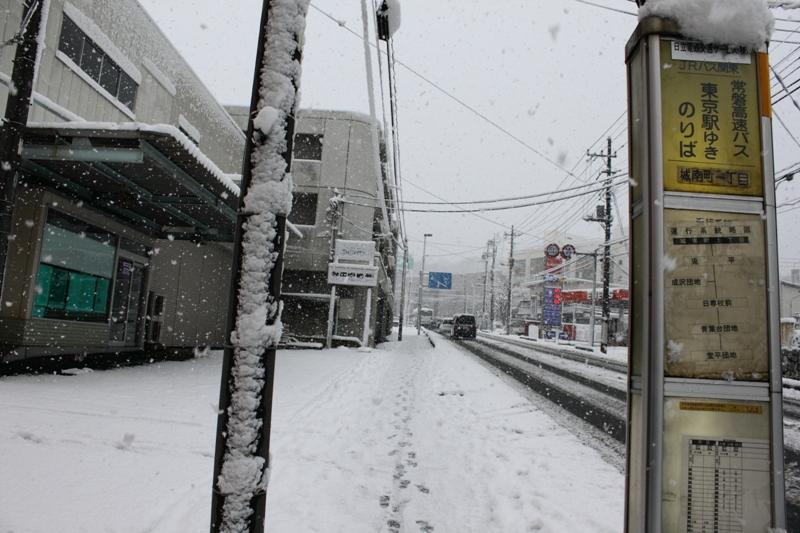 10年2月18日・雪景色_c0129671_995832.jpg