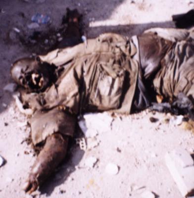 アメリカ、アフガニスタンで、ファルージャ式攻撃を準備  by Bill Van Auken_c0139575_22555991.jpg