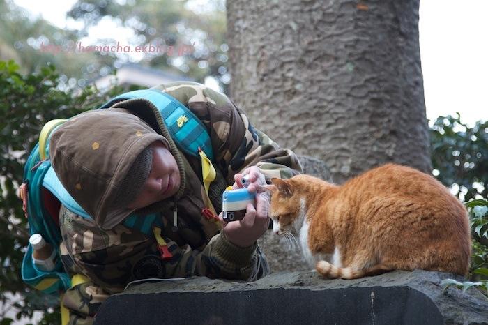 KEN3TV vs Cats in Enoshima_c0158775_21483814.jpg